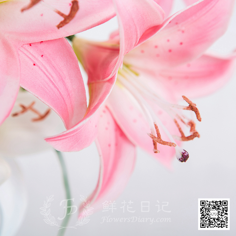 PU手感香水百合仿真花束 6花4果 白色+粉色